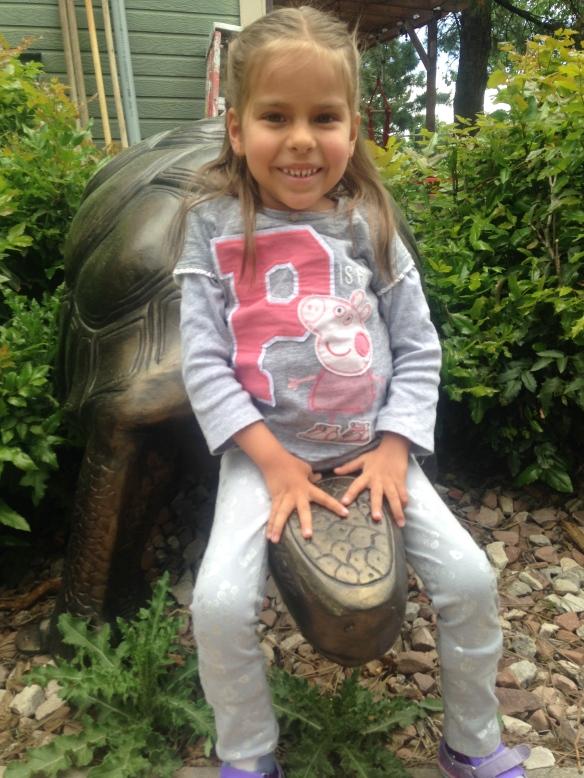 adri turtle